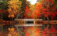 New England, Autumn