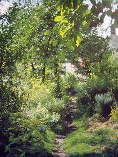 Hartova lesní zahrada