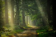 Break Through by npieters. Please Like http://fb.me/go4photos and Follow @go4fotos Thank You. :-)