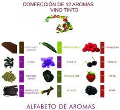 Aproximadamente existen hasta 800 aromas diferentes procedentes del vino. Este es un ejemplo de 12 aromas de uvas tintas.