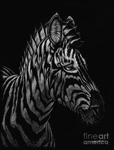 Zebra Painting - Dragon Zebra by Stanley Morrison