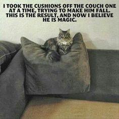 He IS magic!