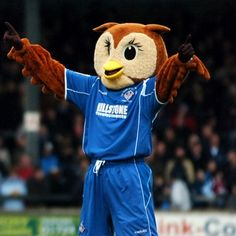 Oldham Athletic - Chaddy the Owl.