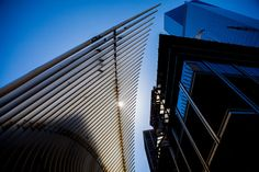 As Oculus at World Trade Center Opens, So Does a Neighborhood - NYTimes.com