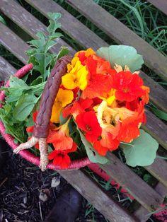 Voor door de sla , lekker pittige bloem
