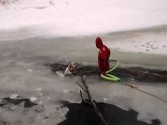 Poor dog fell in an icy river. Humans got your back, dog.