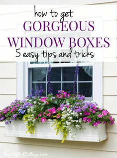 Gorgeous Window Box Tips from The Lilypad Cottage - Garden Design Window Box Plants, Window Box Flowers, Window Planters, Fall Planters, Flower Planters, Fall Window Boxes, Balcony Flower Box, Flower Pots, Shade Flowers