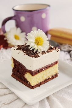 Cake with white chocolate mousse and vanilla White Chocolate Mousse Cake, White Chocolate Desserts, Romanian Desserts, Romanian Recipes, Pie Co, Chocolate Moose, French Desserts, Sweet Pastries, Baking And Pastry