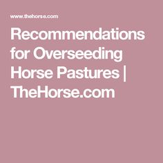 Recommendations for Overseeding Horse Pastures | TheHorse.com