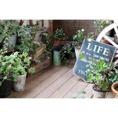 植物だけでなく、さりげなく小物を置いて雰囲気を楽しんで♫アンティーク風なプレートや木箱などを置いて、シャビーなとっておきの空間の完成です。