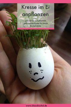 Jedes Jahr zum Frühling und Ostern wird bei uns Kresse im Ei angeplatzt. Was als spielerische Förderung für die Feinmototik und die Wahrnehmung in Form einer Geschenkidee zum basteln mit dem autistischen Kind begonnen hat, wurde irgendwann zur Tradition im Osternest. Die Omas und Opas freuen sich über die kleinen Ostergeschenke und die Kinder haben während der Ferien Spaß beim basteln, Kresse anpflanzen und lustige Geschichter malen.