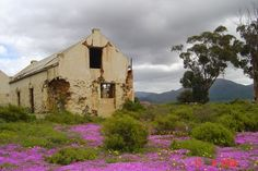 Photo of Old ruins of farm house near Klein Plasie Abandoned Farm Houses, Old Farm Houses, Abandoned Buildings, Abandoned Places, Pioneer House, Derelict House, African House, Beautiful Places, Beautiful Pictures