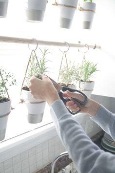 Herb Garden In Kitchen, Diy Herb Garden, Herb Garden Design, Kitchen Herbs, Easy Garden, Herbs Garden, Backyard Kitchen, Potager Garden, Garden Ideas