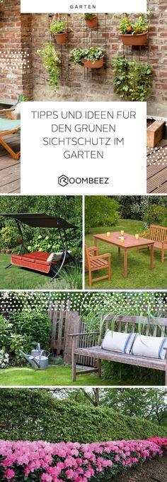 Lieblich #sichtschutz #garten #pflanzen Tipps Und Ideen Für Den Grünen Sichtschutz  Im Garten Findet