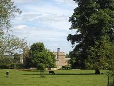 landscape Rousham House with tree grove and grazing cattle