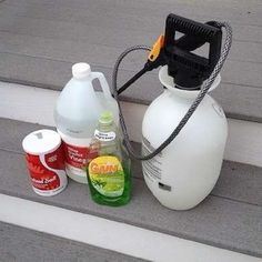 Natural Weed Control - Natural Weed Killer - 9 Ways to a No-Weeds Garden - Bob Vila Garden Weeds, Lawn And Garden, Organic Gardening, Gardening Tips, Killing Weeds, Weed Killer Homemade, Bob Vila, Weed Control, Diy Cleaning Products