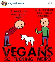 flesh eaters have no idea how weird and cruel they are...... Instagram #vegansidekick
