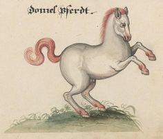 http://www.e-manuscripta.ch/zuz/bilder/content/pageview/20378
