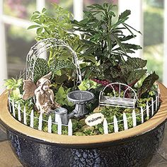 Fairy Garden Accessory Set (7 Pc) - Create an enchanted fairy world right in your garden! This whimsical 7-piece accessory set is filled with everything you need to make a fantastically fun magical wonderland. scaled down to a fairy-friendly height! You provide the container, plants and soil. Comes with instructions that include plant suggestions for both indoor and outdoor set up. $34.98 CAD