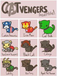Cat cat and cat!