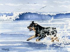 ROTTWEILER Beach Watercolor Painting Dog 8 x 10 ART Print Signed by Artist DJR | eBay