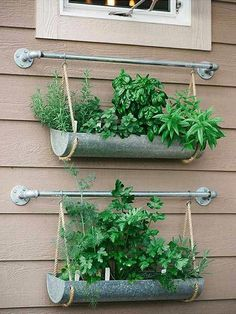 If you're working with a small backyard or patio, use a vertical garden to grow your vegetables, herbs, and other plants. These DIY vertical gardens will help you grow the best herbs you've ever tried. Check out these unique planters… Continue Reading → Jardim Vertical Diy, Vertical Garden Design, Vertical Gardens, Shoe Rack Vertical Garden, Patio Decorating Ideas On A Budget, Garden Design Ideas On A Budget, Garden Diy On A Budget, Small Vegetable Garden Ideas On A Budget, Outdoor Patio Ideas On A Budget Diy