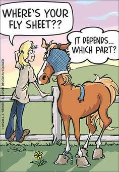 Fly Sheet #horse comic