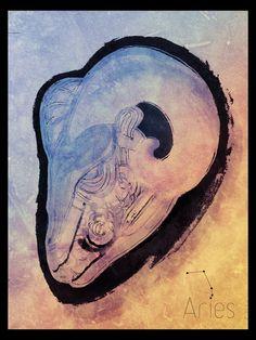 "Aries ""The Ram"" - Poster by Hugo Belo, via Behance"