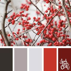 Berry red color inspiration // Christmas Color Schemes // Click for more Christmas color palettes, mood boards and color combinations at https://sarahrenaeclark.com #color #colorscheme #colorpalette