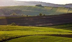 Beskid Niski | zoom | digart.pl Mountains, Landscape, Nature, Photography, Travel, Scenery, Naturaleza, Photograph, Viajes