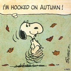 autumn breaths: Photo