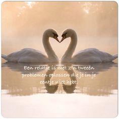 Een relatie is met z'n tweeën problemen oplossen die je in je eentje niet hebt #relatie #samen #liefde