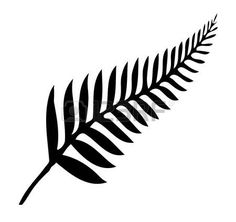 fern: Silhouette of a silver fern, a national emblem of New Zealand over a white background