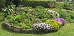 -neuer Gartentraum- Steingarten