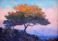 """Tree of Life, Torrey Pines by Catherine Grawin Oil ~ 6"""" x 8"""""""