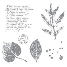 Farewell to French Foliage - LOTS of retiring Stampin' Up! products - see my blog #CLOcards for more details and lists!