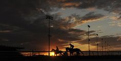 Trainers put their thoroughbred horses through their paces during sunrise in the early morning at Woodbine Racetrack in Toronto