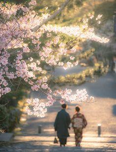 KYOTO DAYS ~ Nanzen-ji Temple 南禅寺