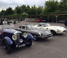E-Types at Goodwood E Type, Jaguar, Antique Cars, Photo And Video, Instagram, Vintage Cars, Cheetah