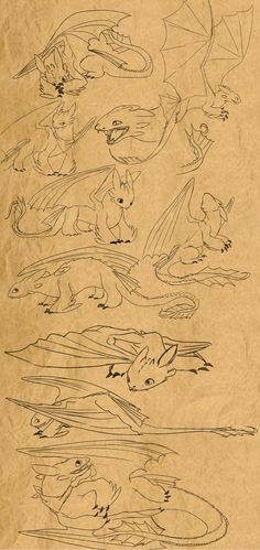 Sketches of Toothless.