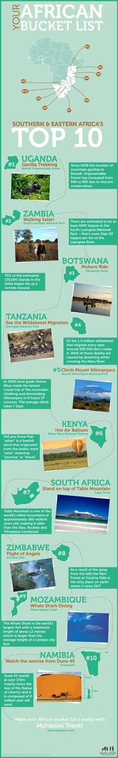 African Bucket List Infographic