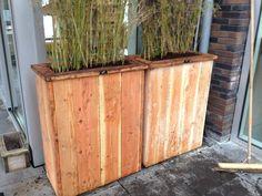 douglashouten plantbakken met bamboe