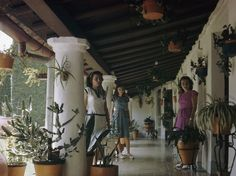 1940's Three women stand on a patio filled with potted cactuses.Camaguey, Cuba.//MELVILLE B. GROSVENOR/National Geographic Creative