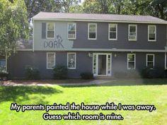 Dork Lives Here