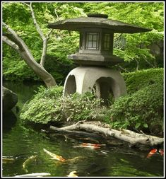 Koi Ponds great landscaping ideas.
