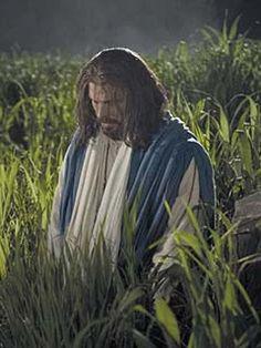 jesus cristo no getsêmani - Pesquisa Google