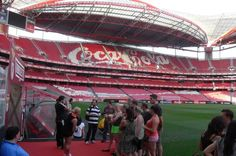 Benfica Stadium and Museum Tour Visit Portugal's largest stadium, Estádio da Luz, home to S.L. Benfica, and explore the exhilarating history at the Cosme Damião museum. With the capacity to accommodate over 65,400 spectators, the stadium is mostly used for football (soccer) matches, and has previously hosted the final match for Europe's premier club football tournament.You'll be picked up at your hotel in Lisbon at either 9am or 2:30 pm, and transported to Est&aa...