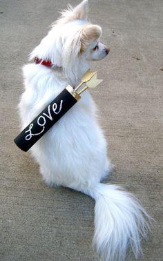 DYI Cupid Arrow Carrier -Handmade Fashions & DIY Crafts for Pets, Erika and Sebastian