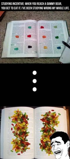 Gummy Bears as an incentive to study.  @Tracy Andrews