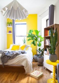 House Tour: A Bold, Colorful Bronx Studio | Apartment Therapy